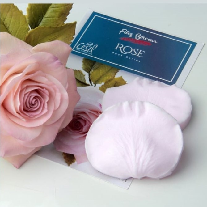 FİLİZ BİRCAN ROSE SİLİKON SET